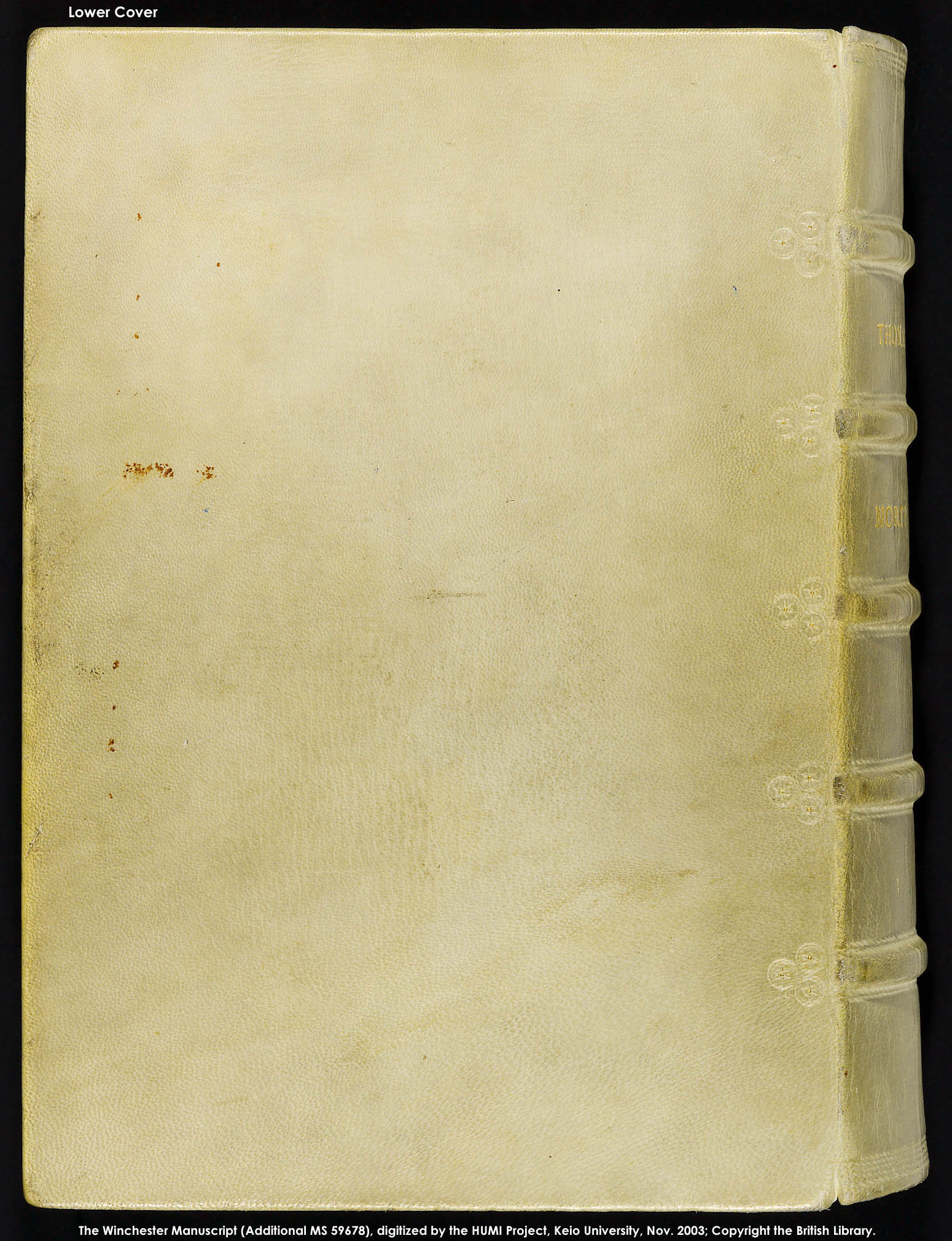 Lower Cover